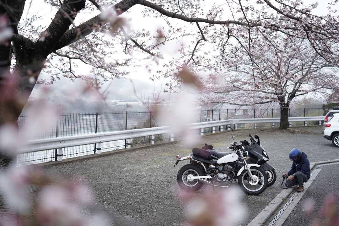 津久井湖観光センター・津久井観光協会1